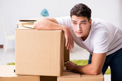 The young man moving boxes at home Stock Image