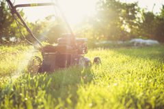 Young man mowing the grass Stock Images