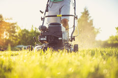Young man mowing the grass Royalty Free Stock Photography
