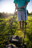 Young man mowing the grass Royalty Free Stock Photos