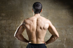 Young man muscle back portrait Stock Photos