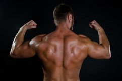 Young man and muscular back. royalty free stock photos
