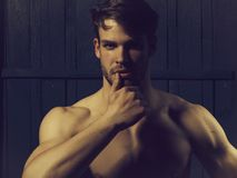 Sexy young man. Young man with muscular bare chest and sexy body posing in studio on wooden background royalty free stock images