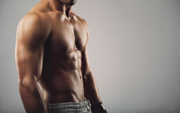 Young man with muscular body. Close up portrait of shirtless young man standing on grey background. Man with muscular body. Health and fitness concept with Stock Images