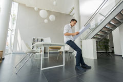 Young man in the office. Young man standing in the office Stock Image