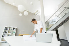 Young man in the office. Young man standing in the office Royalty Free Stock Photo