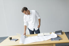 Young man in the office. Young man working in the office Stock Image