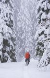 Young man trekking in harsh winter condition stock photo