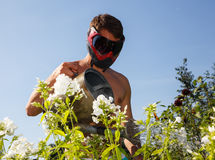 Young man in paintball mask watering the flowers Stock Photo