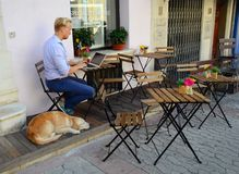Young man with pc in cafe. Outdoor seating with dog in Antibes, France Stock Photography