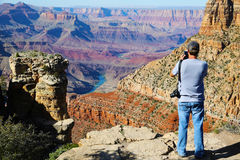 Young Man PhotographingThe Grand Canyon Royalty Free Stock Photo