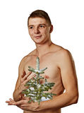 Young man with pine tree. Stock Image