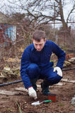 Young man planting winter garlic Stock Photo
