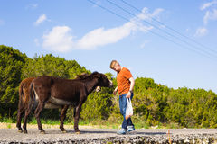 Young man playing and feed wild donkeys, Cyprus, Karpaz National Park Wild Donkey Protection Area. Royalty Free Stock Photos