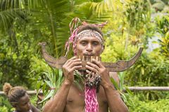 Pan flute musician Solomon Island, South Pacific Ocean. Young man playing handmade panpipe for ceremony on Solomon Islands Royalty Free Stock Photo