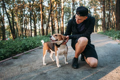 Young man playing with his dog in forest. Evening walk with pet on nature. Healthy lifestyle, domestic animal, nature concept Stock Images