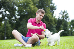 Young man playing with his dog in the park Stock Images