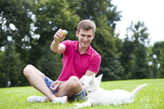 Young man playing with his dog in the park. Young man playing with his dog in the summer park royalty free stock images