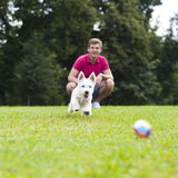 Young man playing with his dog in the park Stock Photography