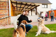 Young man playing with his dogs in garden Stock Photo