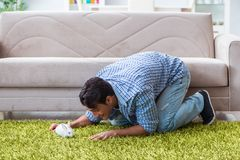 The young man playing with pet rabbit at home Royalty Free Stock Image
