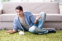 The young man playing with pet rabbit at home. Young man playing with pet rabbit at home Stock Photo