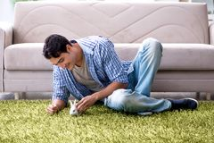 The young man playing with pet rabbit at home. Young man playing with pet rabbit at home Stock Images