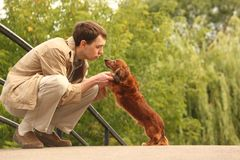 Young man plays with his adorable dachshund Royalty Free Stock Image