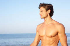 Young man poses on beach Royalty Free Stock Image