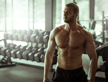 Young man posing in gym Royalty Free Stock Images