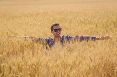 Man posing in a Wheat filed stock photo