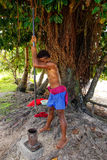 Young man pounding kava roots in Lavena village, Taveuni Island,. Fiji. The roots are used to produce a drink with sedative, anesthetic, euphoriant, and Stock Photos