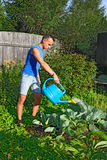 A young man and pours out of the blue watering the cabbage in th Royalty Free Stock Photo