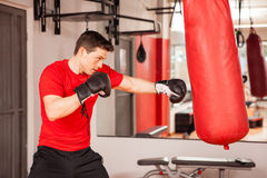 Young man practicing on a punching bag Stock Photos