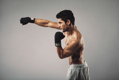 Young man practicing shadowboxing on grey background royalty free stock photo