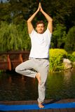 Young man practicing yoga, doing tree pose Stock Image