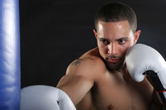 Young Man Punching Bag Royalty Free Stock Image