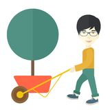 Young man pushing the cart with tree Stock Images