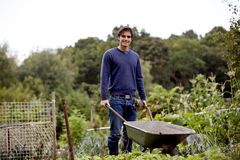 A young man pushing a wheelbarrow on an allotment Royalty Free Stock Photography
