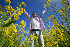Young man in rape field Royalty Free Stock Photo