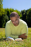 Young Man Reading Royalty Free Stock Image