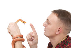 Young man with Red Texas rat snake Royalty Free Stock Images