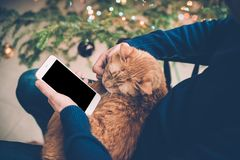 Young man relaxing at home with ginger cat and smartphone in his Stock Photo