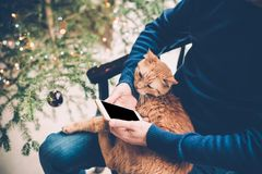Young man relaxing at home with ginger cat and smartphone in his Stock Photography