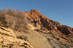 A young man rides a mountain bike down the Jem trail below Gooseberry mesa in the Southern Utah desert on a winter day stock image