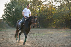 Young man riding  Horse Stock Images