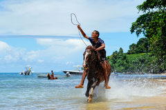 Young man riding horse on the beach on Taveuni Island, Fiji Royalty Free Stock Images