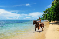 Young man riding horse on the beach on Taveuni Island, Fiji. Taveuni is the third largest island in Fiji Stock Photo