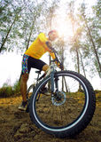 Young man riding mountain bike on natural track use for people s Royalty Free Stock Images