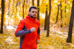 Young Man Running on Sunny Trail in the Beautiful Autumn Oak Forest Stock Photos